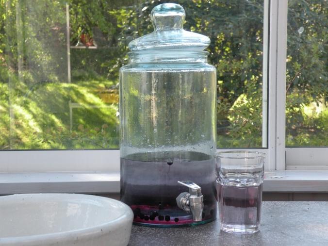 Gott blåbärsvatten