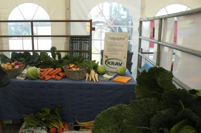 Tångagårds Kravgrönsaker
