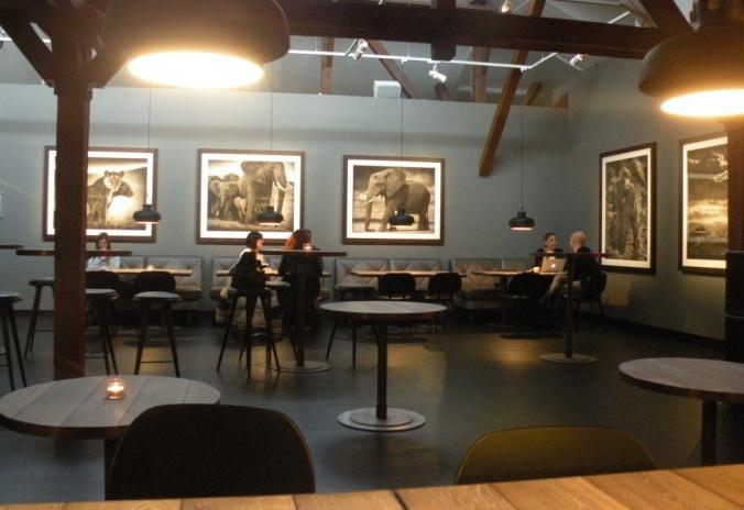 Caféet med naturfoton av Nick Brandt