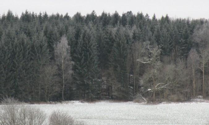 Härliga vinter!