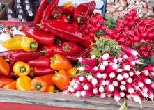Färg och form från grönsakernas rike